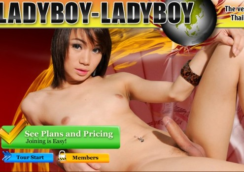 Best ladyboy xxx site if you're passionate about dirty shemales having hardcore fun