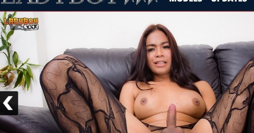 Top premium xxx site if you like hot ladyboy videos